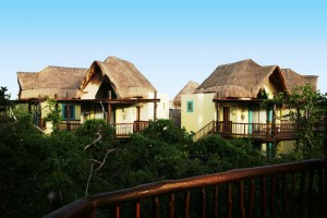 Swiss Family Robinson-style accommodations