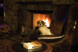 Relax by the fire with your dog at Paws Up